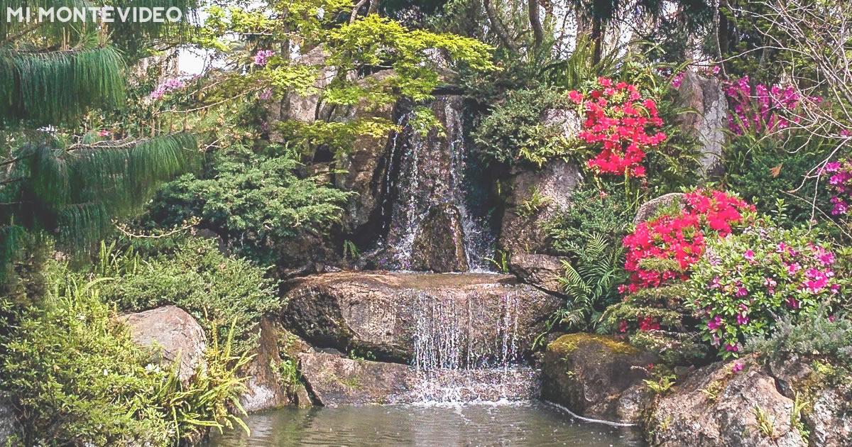 Jardines japones beautiful jardines japones with jardines - Jardines de japon ...